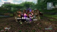 Ephe20101209a