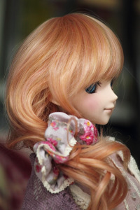 Ephe20111202d04